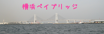 シーバスから見た橋