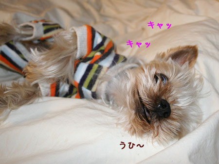 IMG_2007010703.jpg