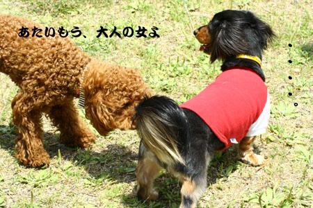 IMG_200705214.jpg