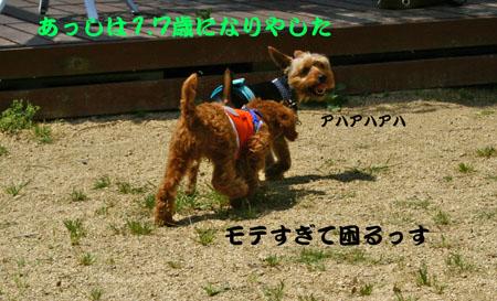 IMG_200705216.jpg