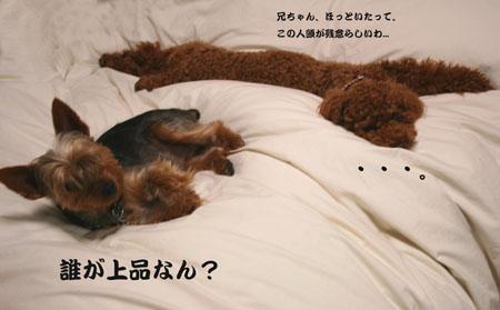 IMG_2007053004.jpg
