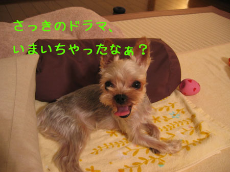 IMG_2007071101.jpg