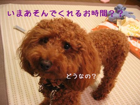 IMG_2007071105.jpg