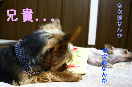 IMG_2007071106.jpg