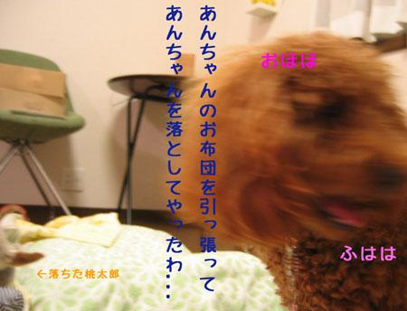 IMG_2007071107.jpg
