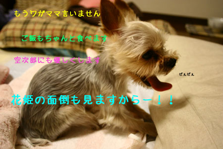 IMG_2007071206.jpg