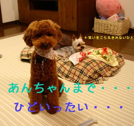 IMG_2007071506.jpg