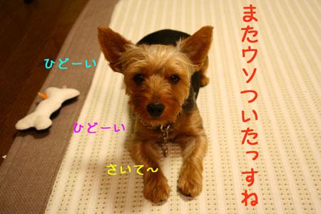 IMG_2007071509.jpg