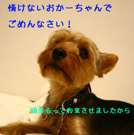 IMG_2007071901.jpg