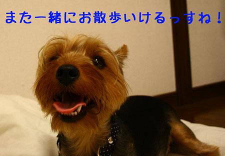IMG_2007071902.jpg