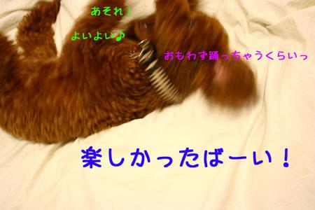 IMG_2007071907.jpg