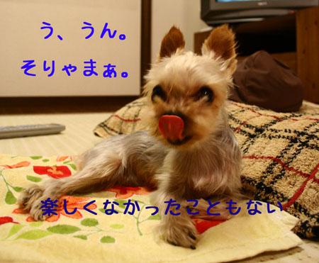 IMG_2007071908.jpg
