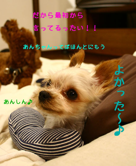 IMG_2007072303.jpg