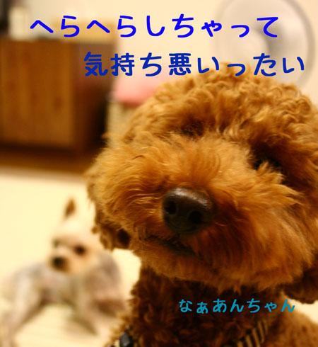 IMG_2007072503.jpg