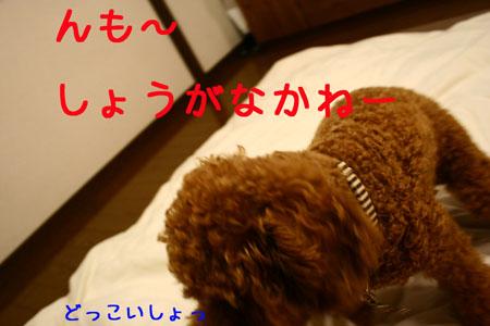 IMG_2007072506.jpg