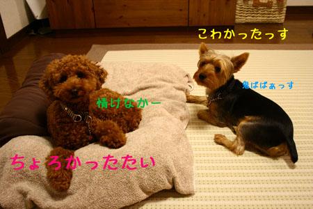 IMG_2007072508.jpg