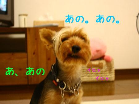 IMG_2007072509.jpg