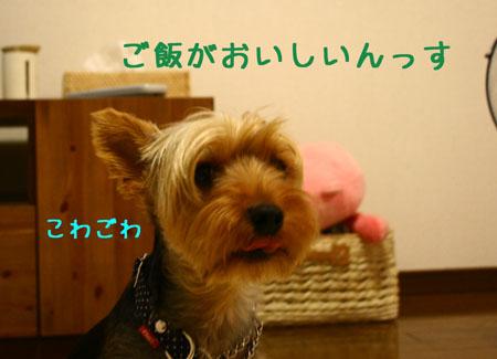 IMG_2007072510.jpg