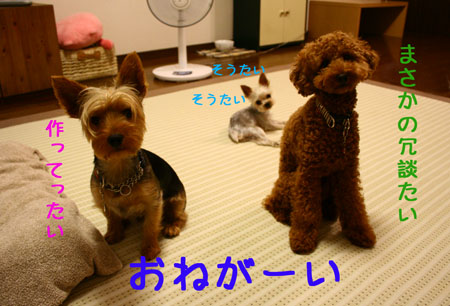 IMG_2007072516.jpg