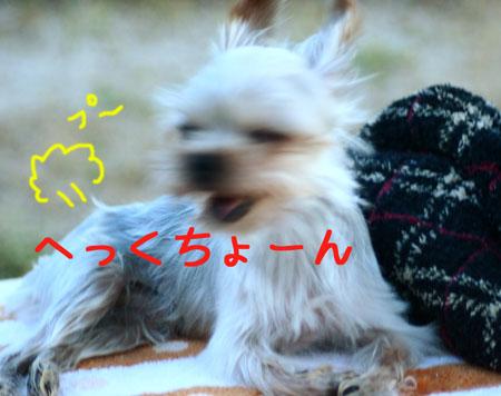 IMG_2007080905.jpg
