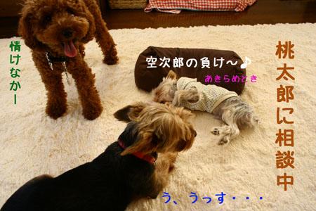 IMG_2007101804.jpg
