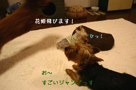 IMG_2007110602.jpg