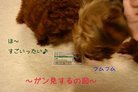 IMG_2007111302.jpg