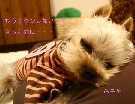 IMG_2007121303.jpg