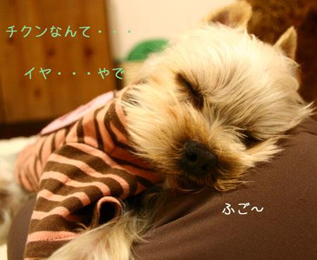 IMG_2007121304.jpg