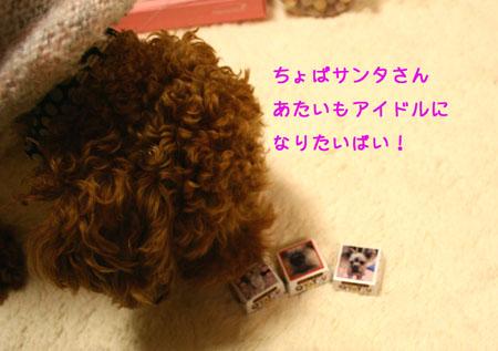 IMG_2007122302.jpg