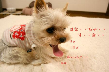 IMG_200801187.jpg