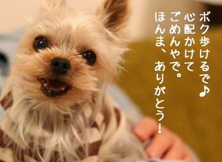 IMG_2008021805.jpg