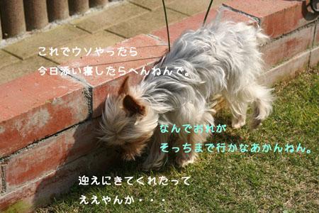 IMG_2008050605.jpg
