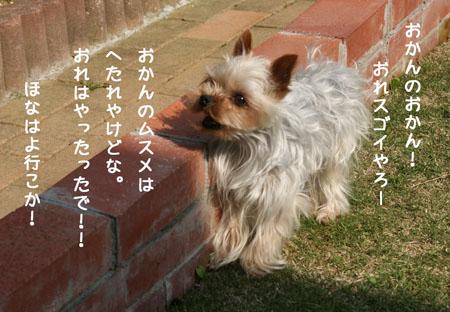IMG_2008050609.jpg