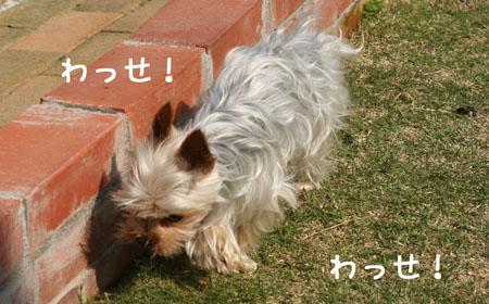 IMG_2008050611.jpg