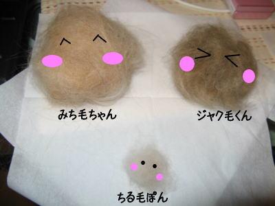 wan11062.jpg