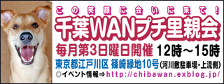 chibawan_satooyakai_weblog320x120.jpg