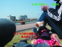 02_20080410234607.jpg