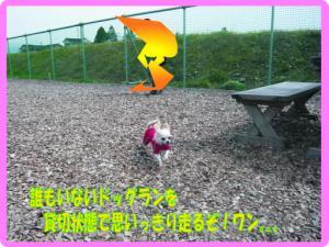 04_20080417224640.jpg