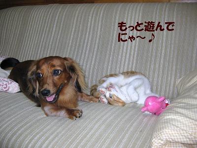 さくら&ひかる-3