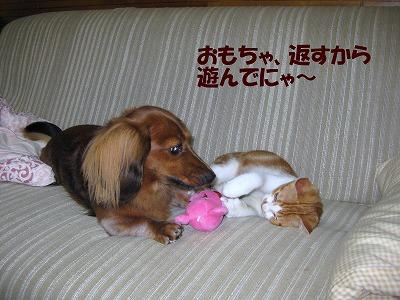 さくら&ひかる-4