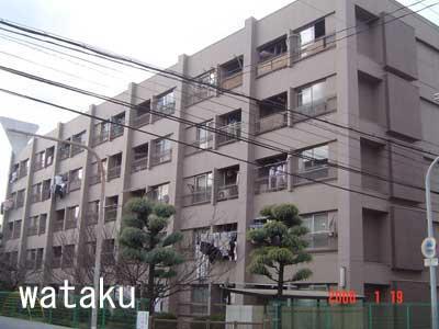 toyosato-k-r(3).jpg