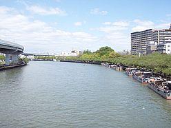 飛翔橋の真ん中で横を向くと、川が視界いっぱいに広がっている