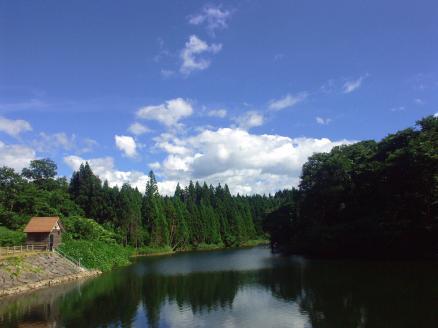 滝の頭-貯水湖