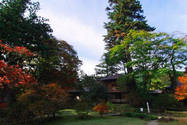 庭から、田母沢旧御用邸