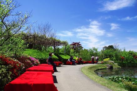 野池の茶屋前