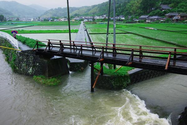 木製の一本橋