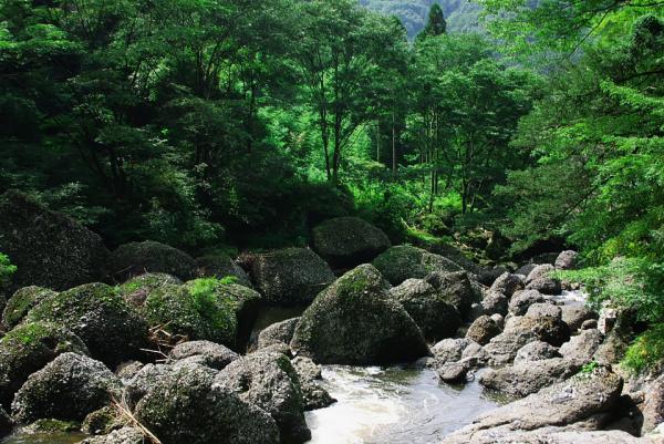 滝川の渓谷