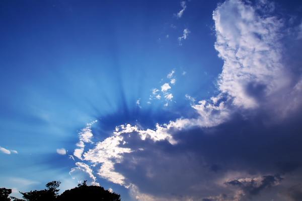 天使の光輪?