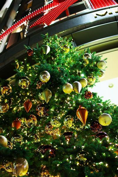 クリスマス-光り輝いて